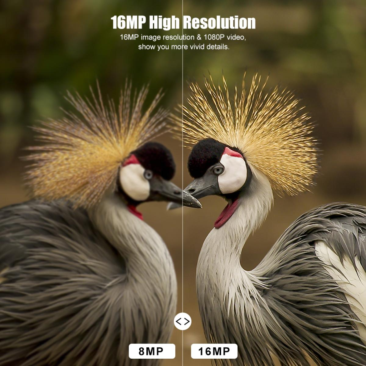 K&F JDL201 0.4 seconds Trigger HD Outdoor Waterproof Hunting Infrared Night Vision Mini Camera